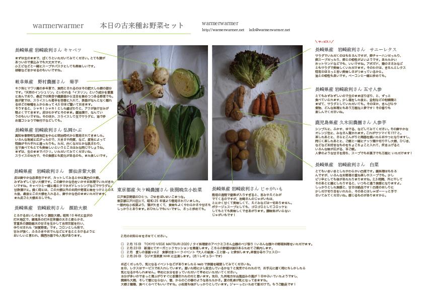 1月31日 本日のお野菜セットの内容です。