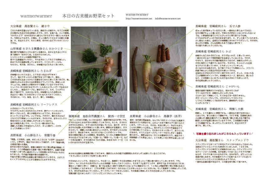 5月15日 本日のお野菜セットの内容です