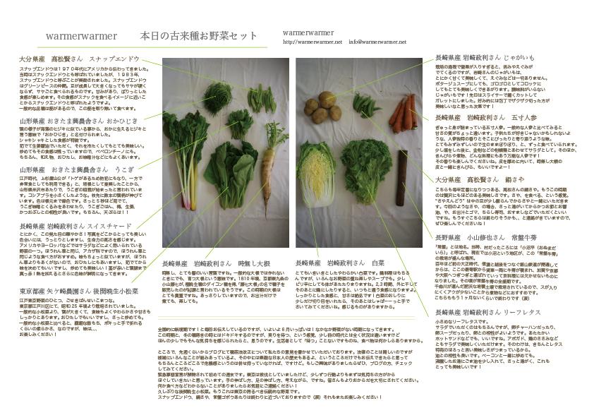 5月29日 本日のお野菜セットの内容です
