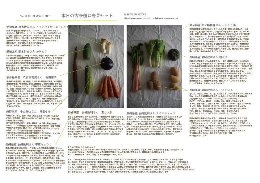 6月19日 本日のお野菜セットの内容です。
