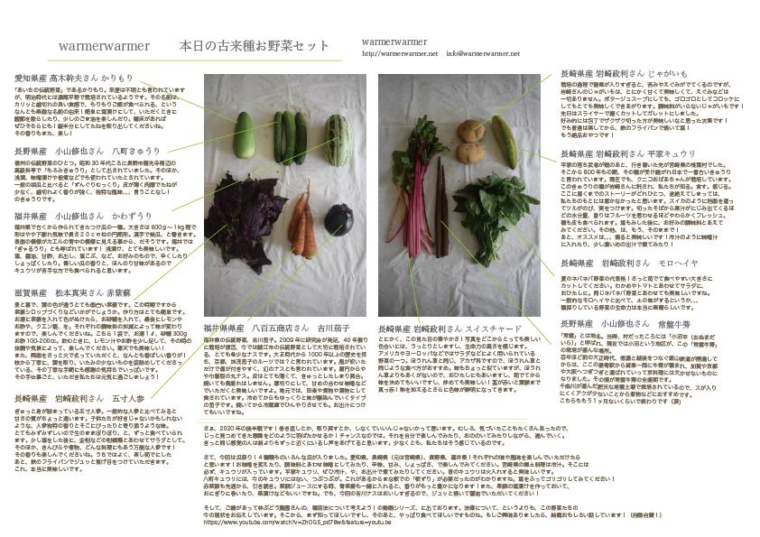 7月3日 本日のお野菜セットの内容です。