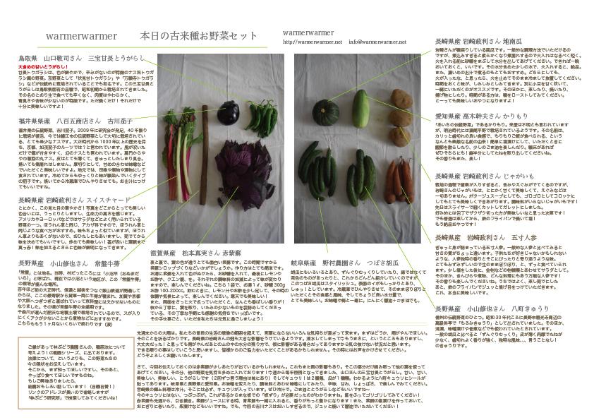 7月10日 本日のお野菜セットの内容です。