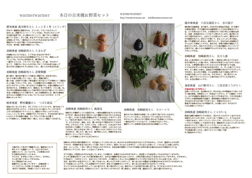 7月17日 本日のお野菜セットの内容です。