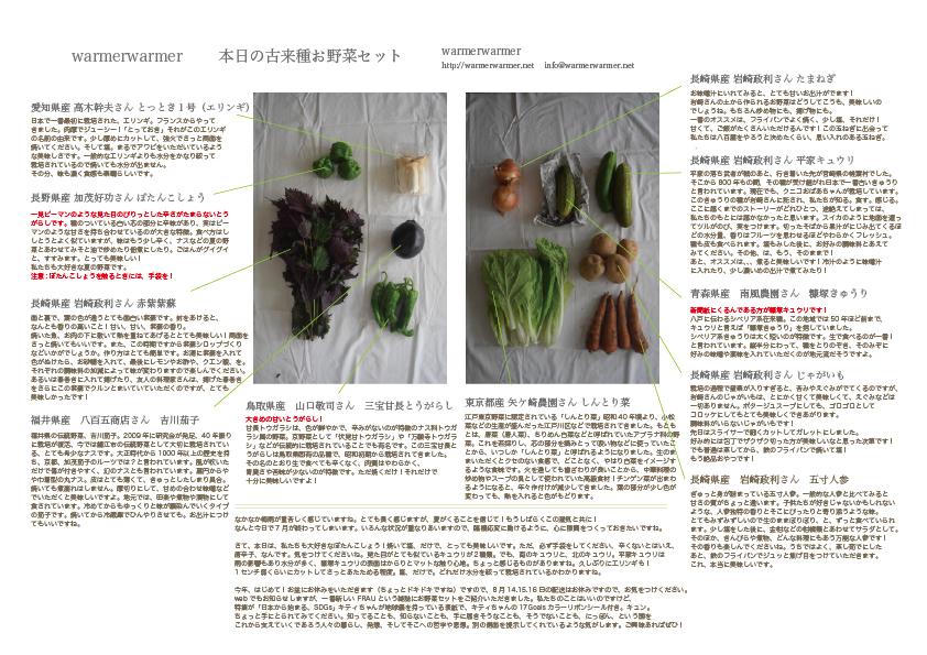 7月31日 本日のお野菜セットの内容です。