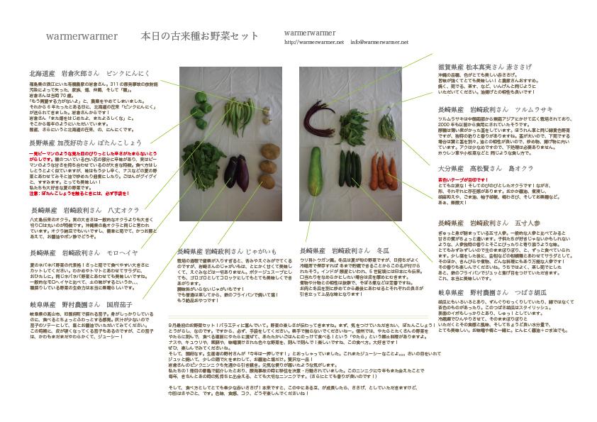 9月4日 本日のお野菜セットの内容です。