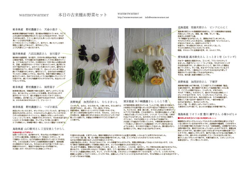 9月11日 本日のお野菜セットの内容です