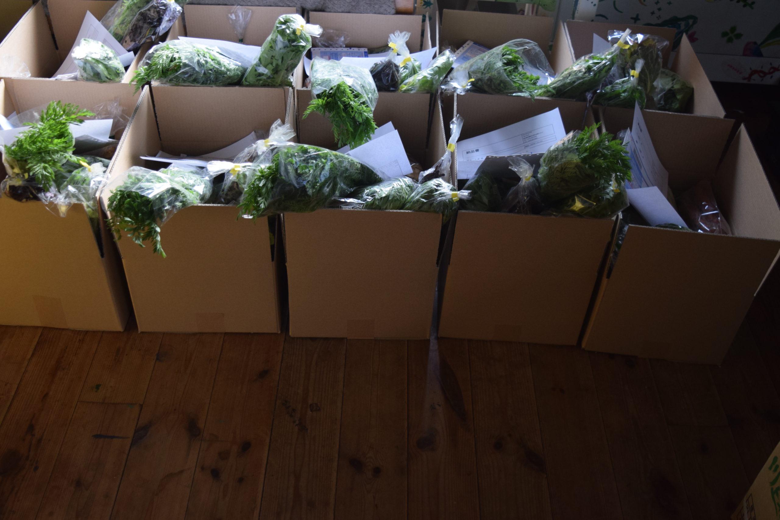 野菜が届かない日に「未来からの足音」が届いた