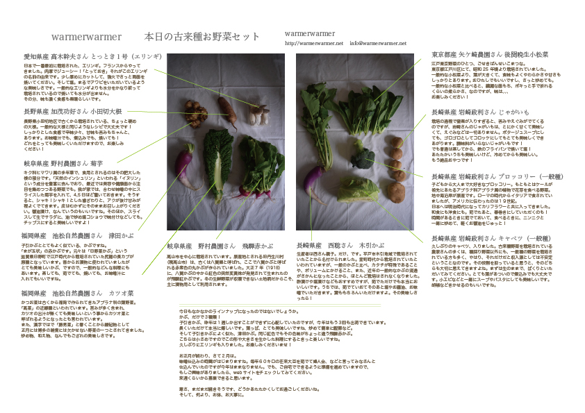 1月15日 本日のお野菜セットの内容です。