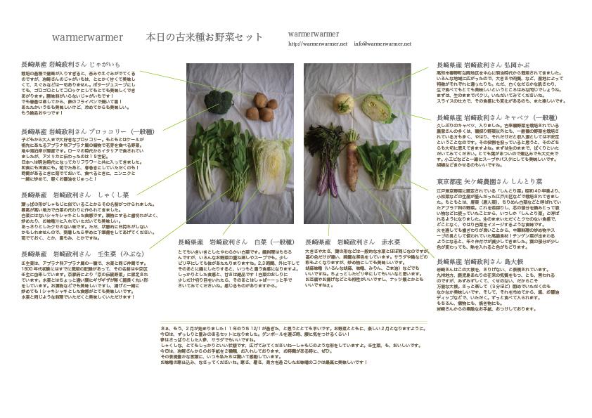 2月5日 本日のお野菜セットの内容です