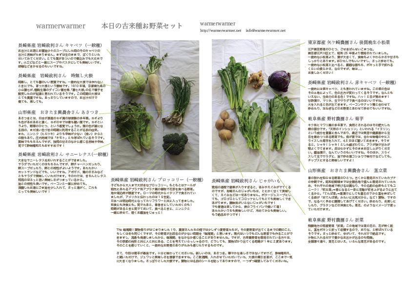 4月9日 本日のお野菜セットの内容です。