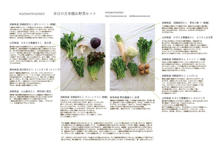 4月16日 本日のお野菜セットの内容です