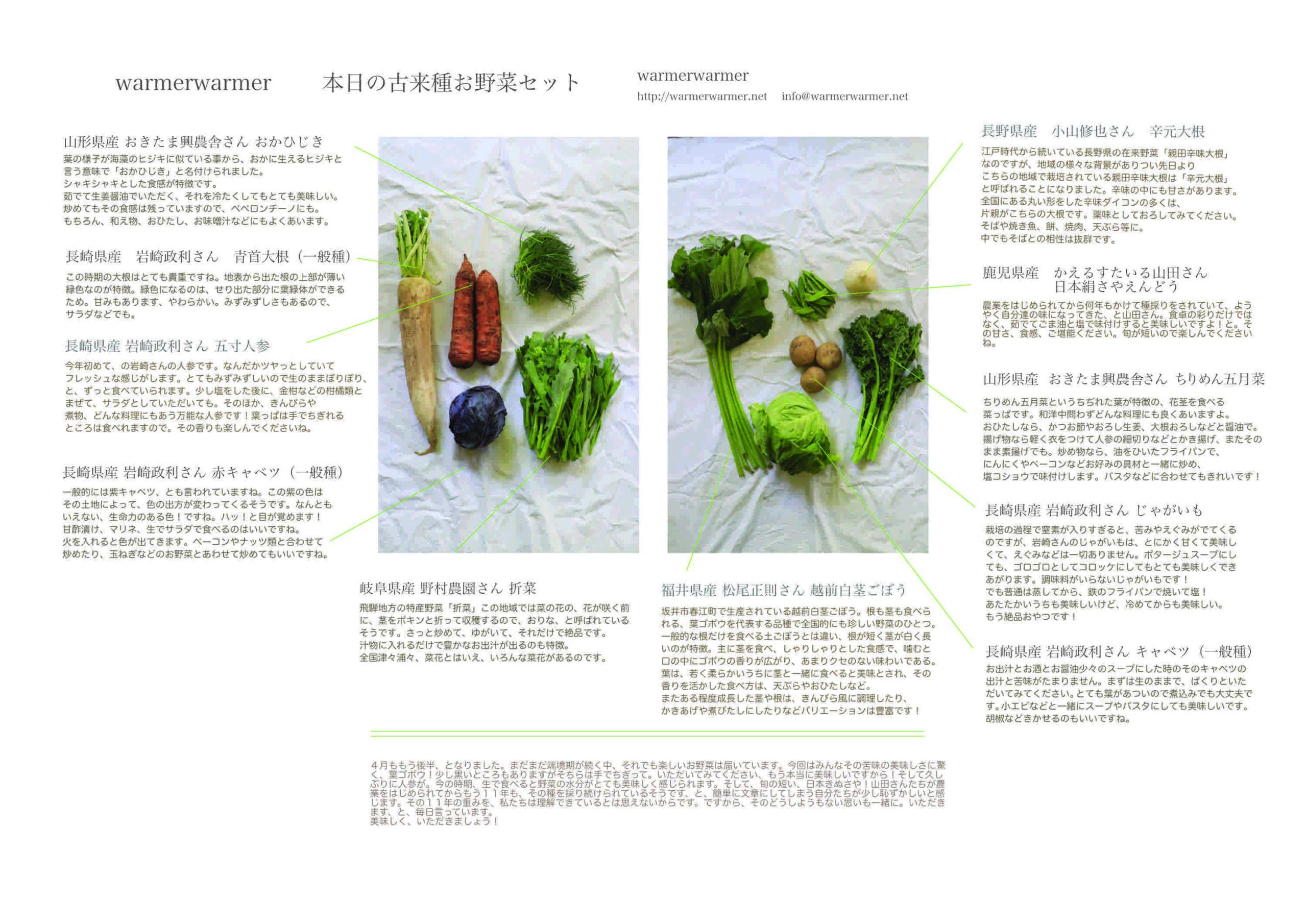 4月23日 本日のお野菜セットの内容です