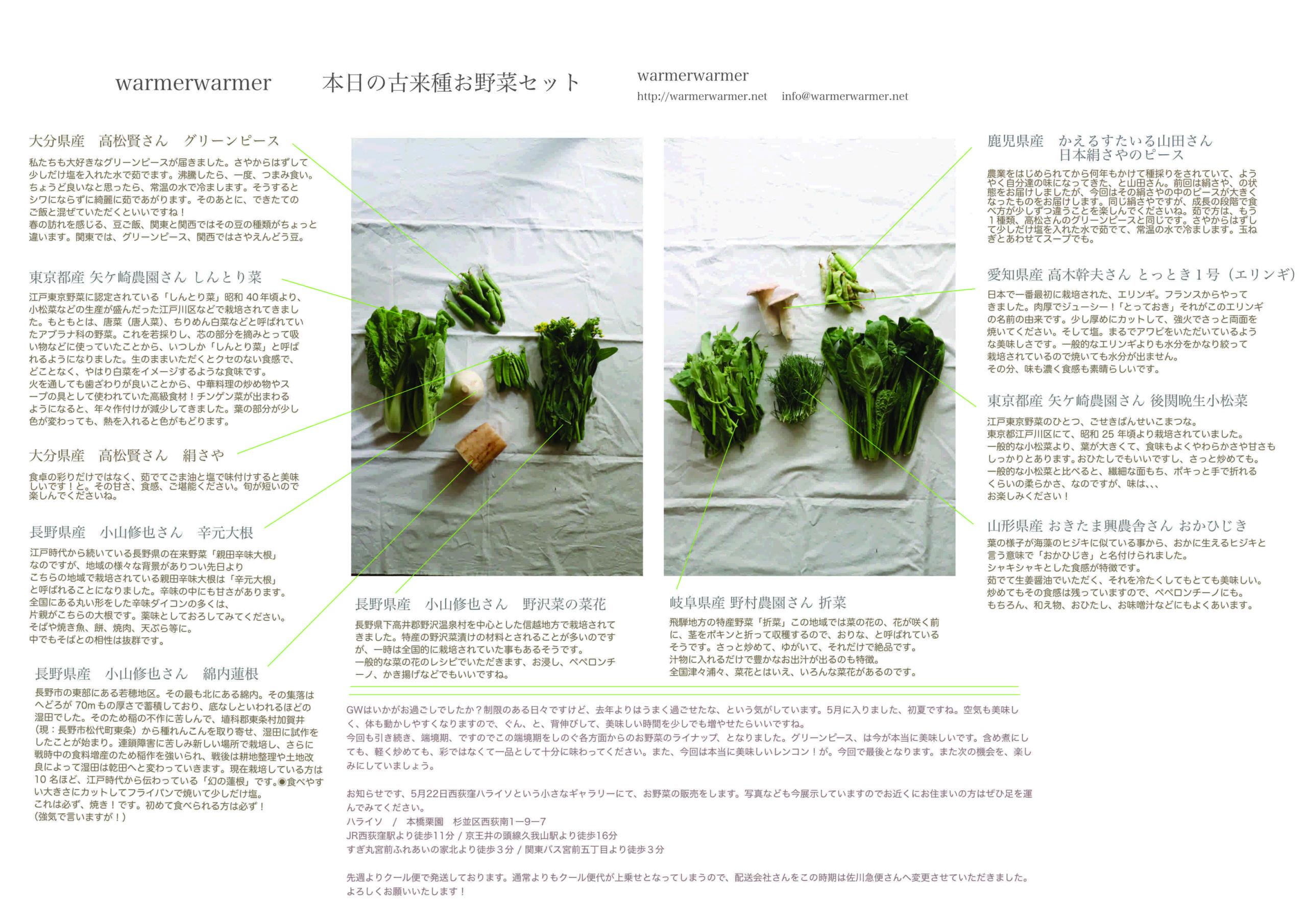 5月7日 本日のお野菜セットの内容です。