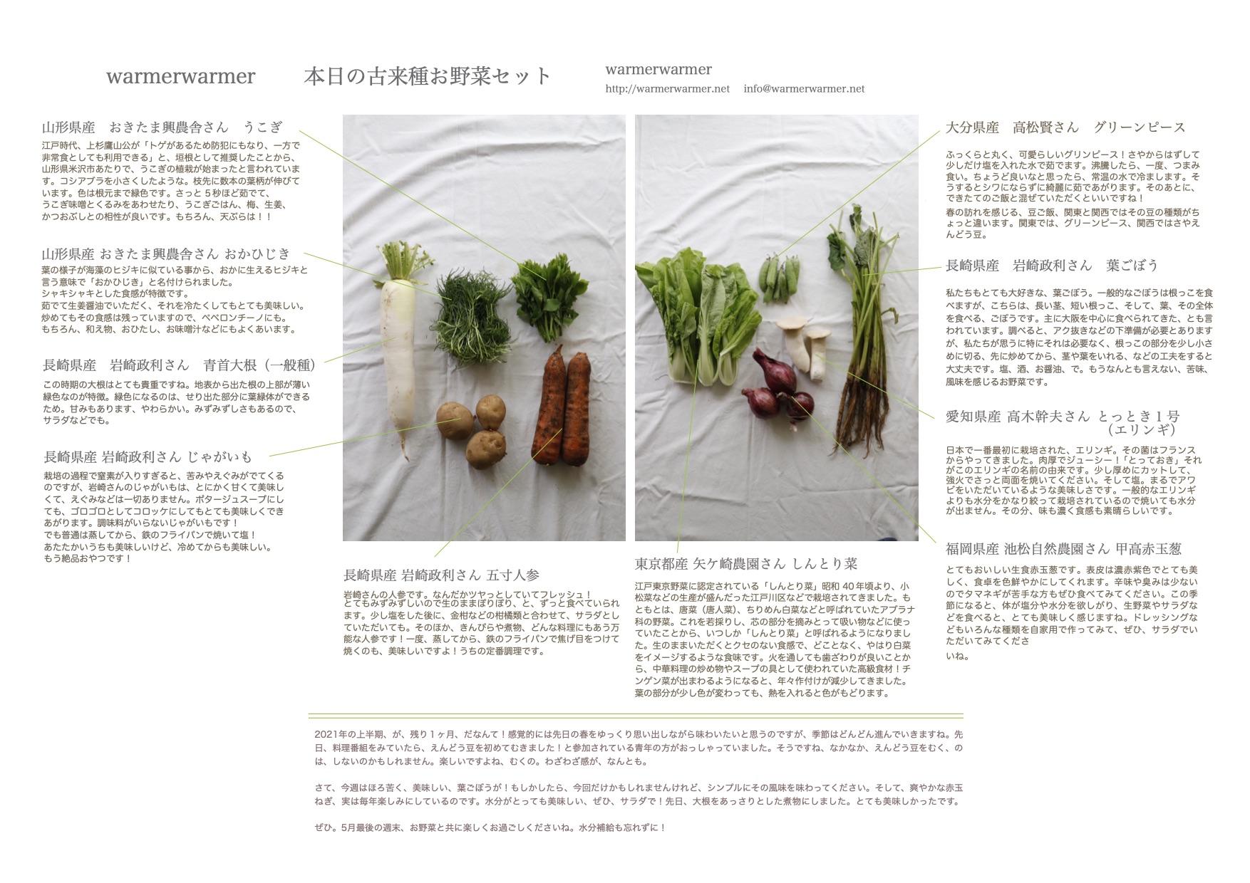 6月4日 本日のお野菜セットの内容です。