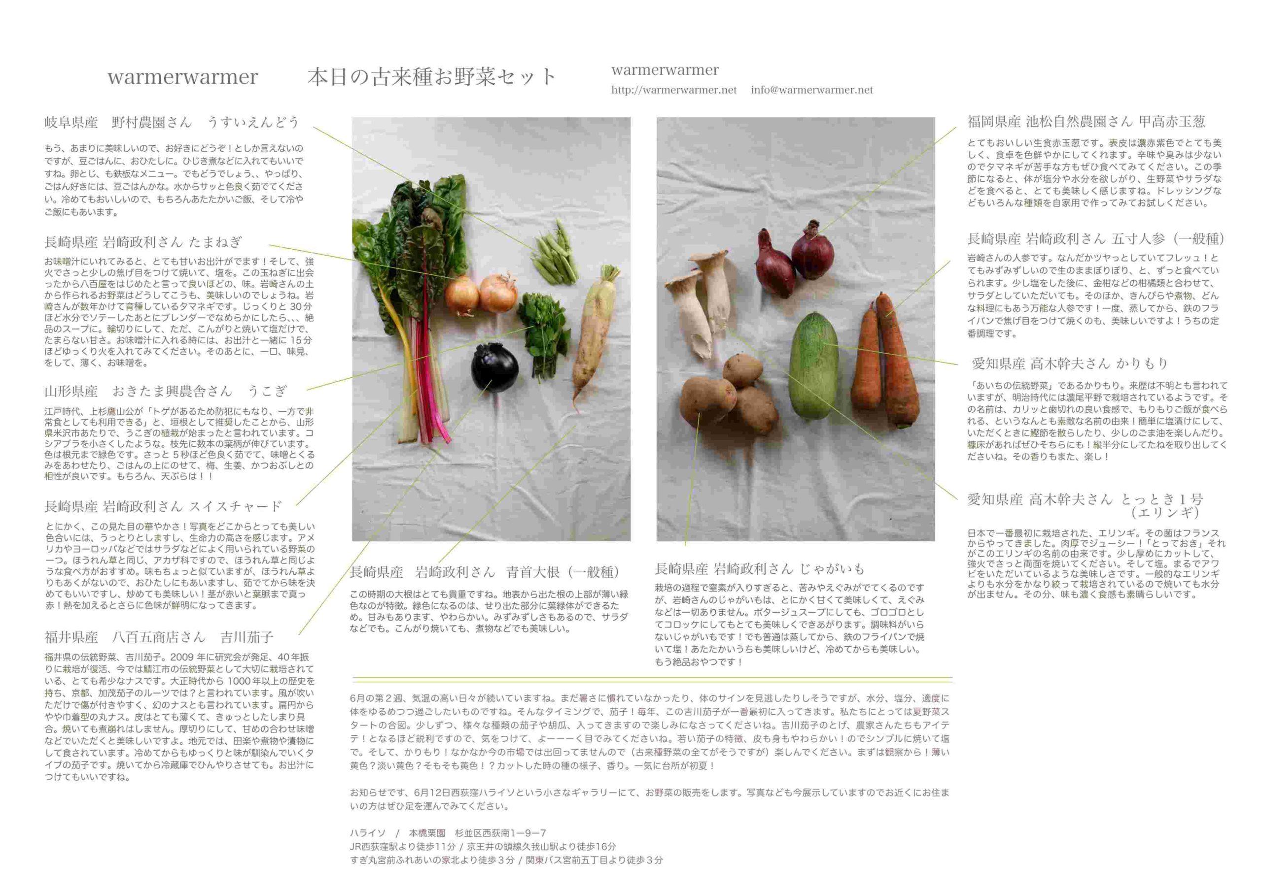 6月11日 お野菜セットの内容です。