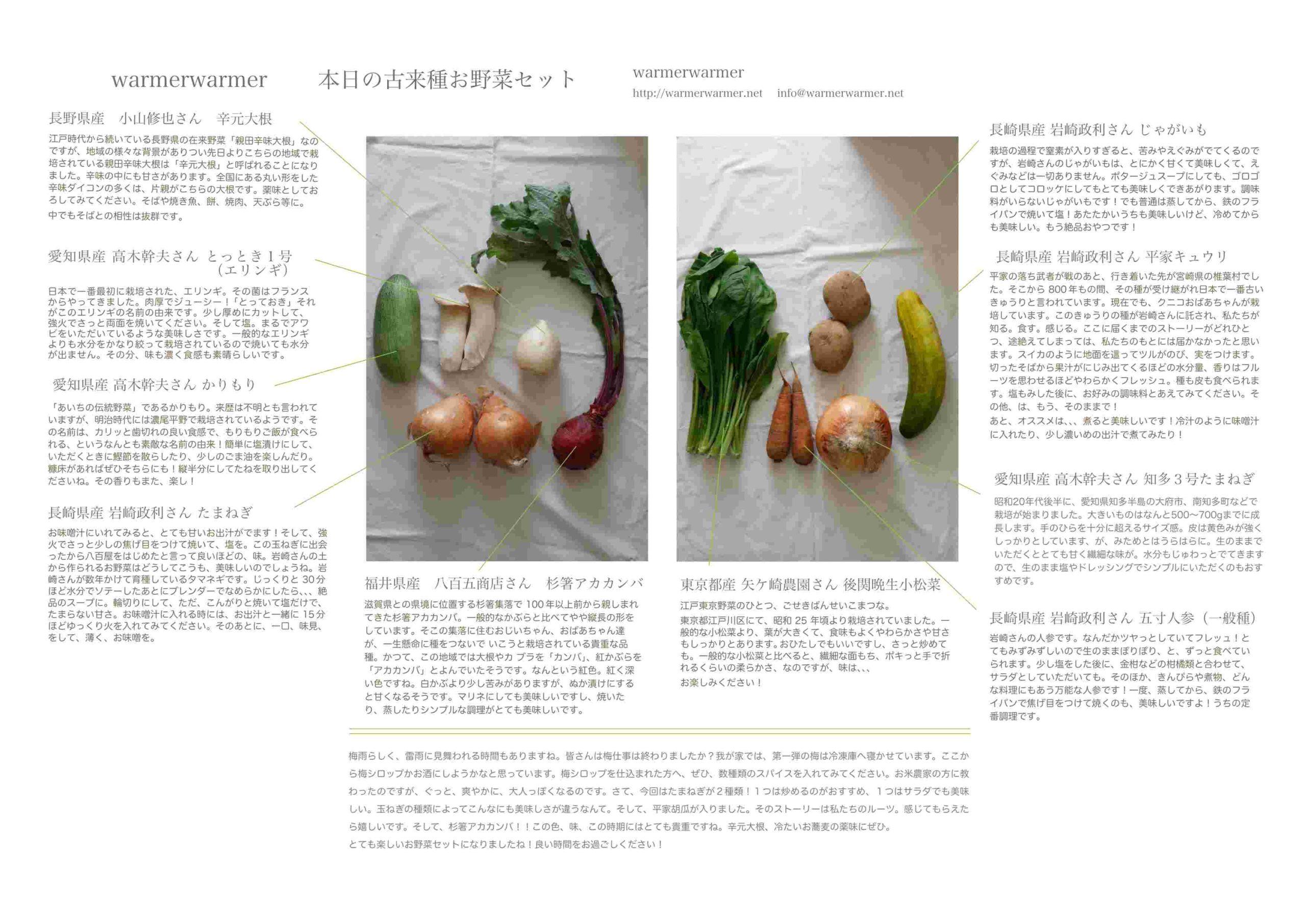 6月18日 本日のお野菜セットの内容です。