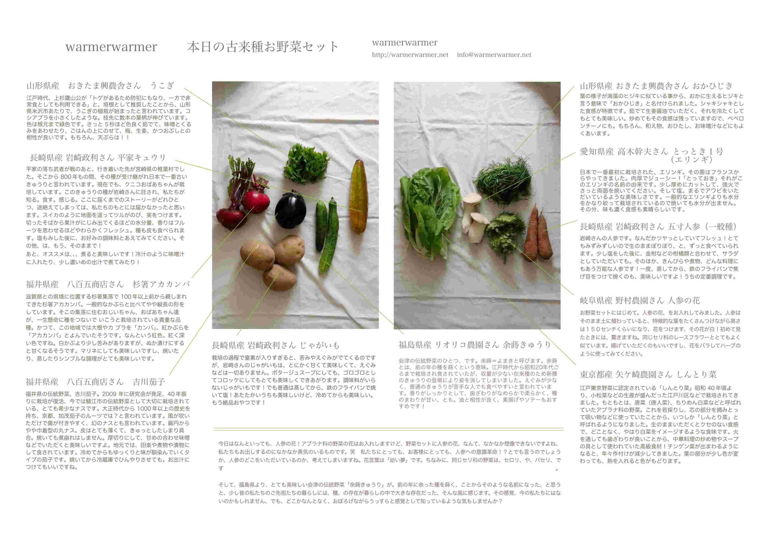 6月25日 本日のお野菜セットの内容です。