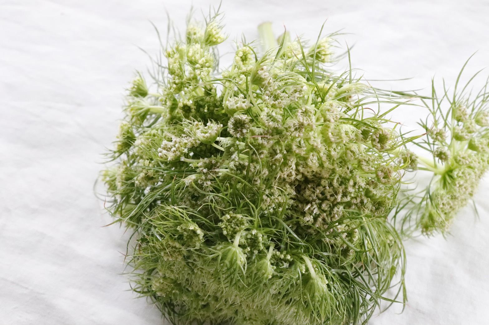 人参の花をお野菜セットに。