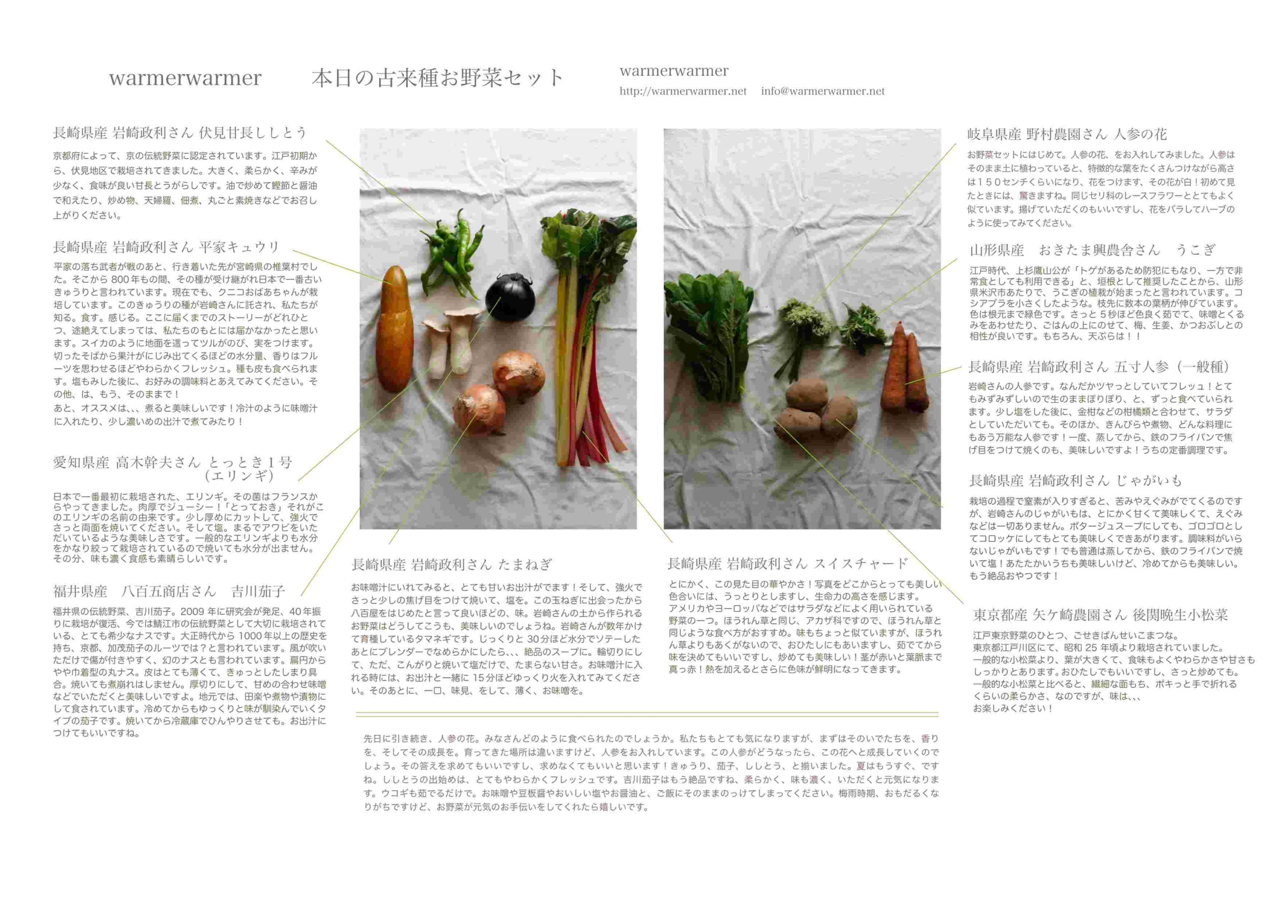 7月2日 本日のお野菜セットの内容です