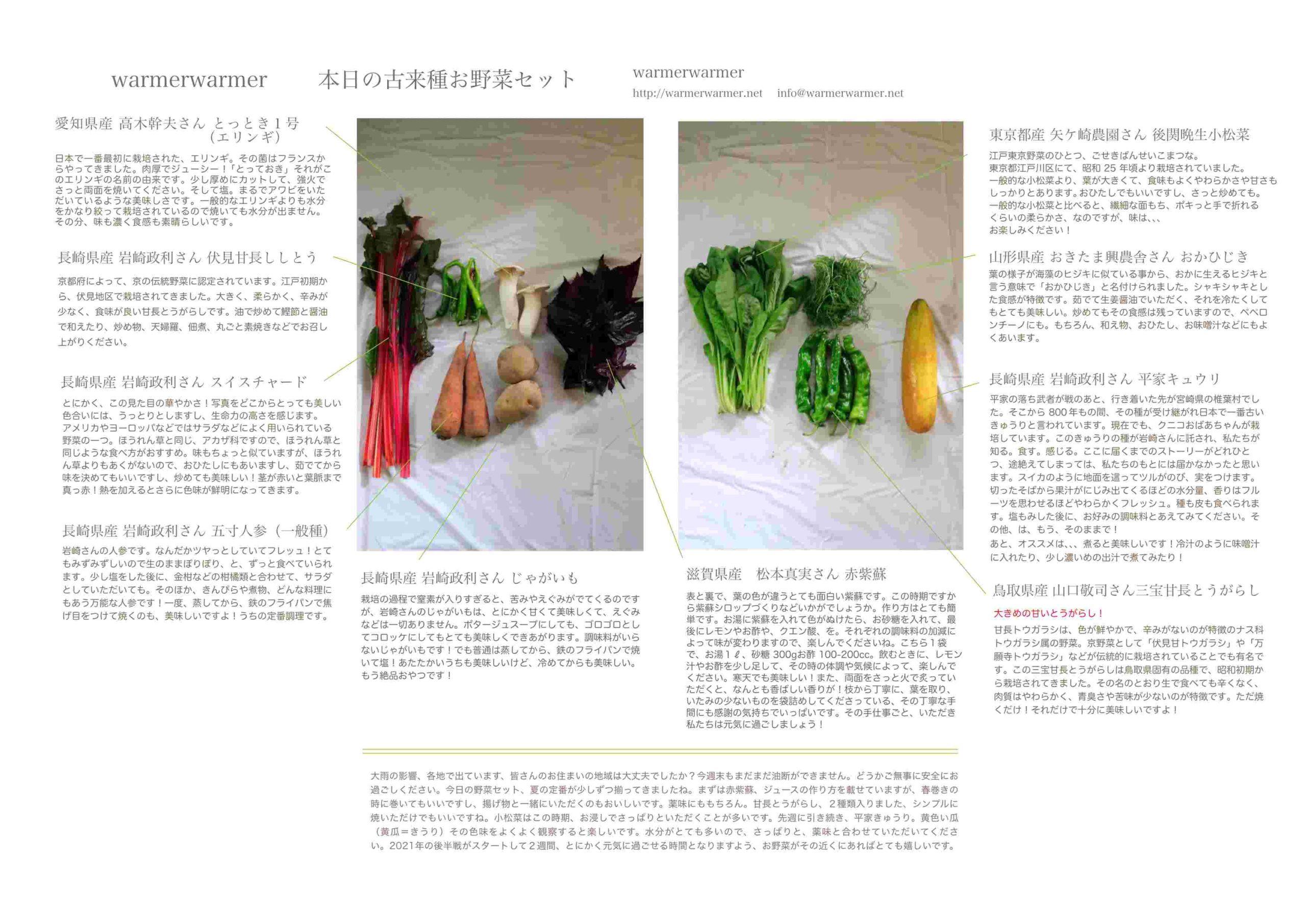 7月9日 本日のお野菜セットの内容です。