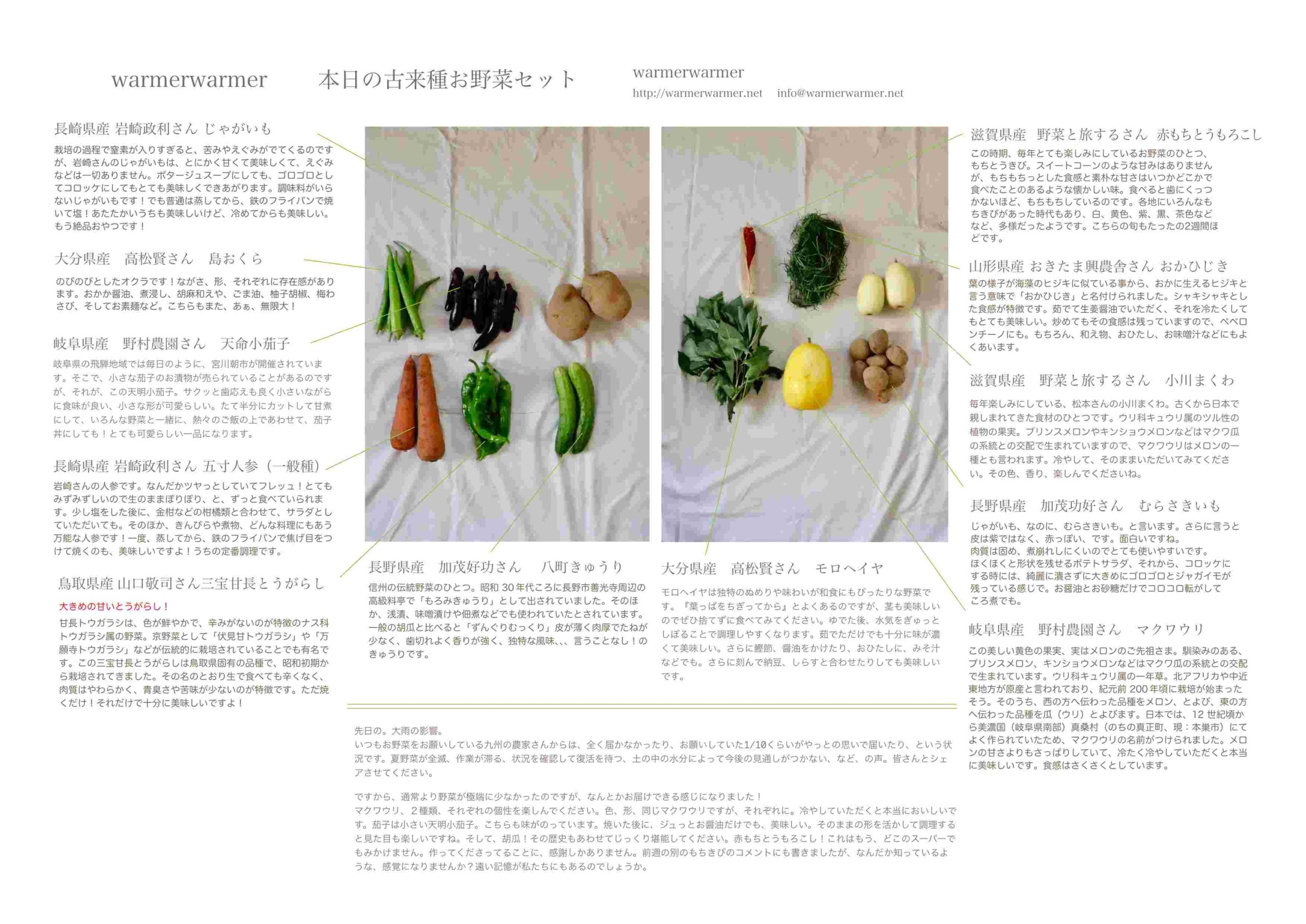 8月20日 本日のお野菜セットの内容です。