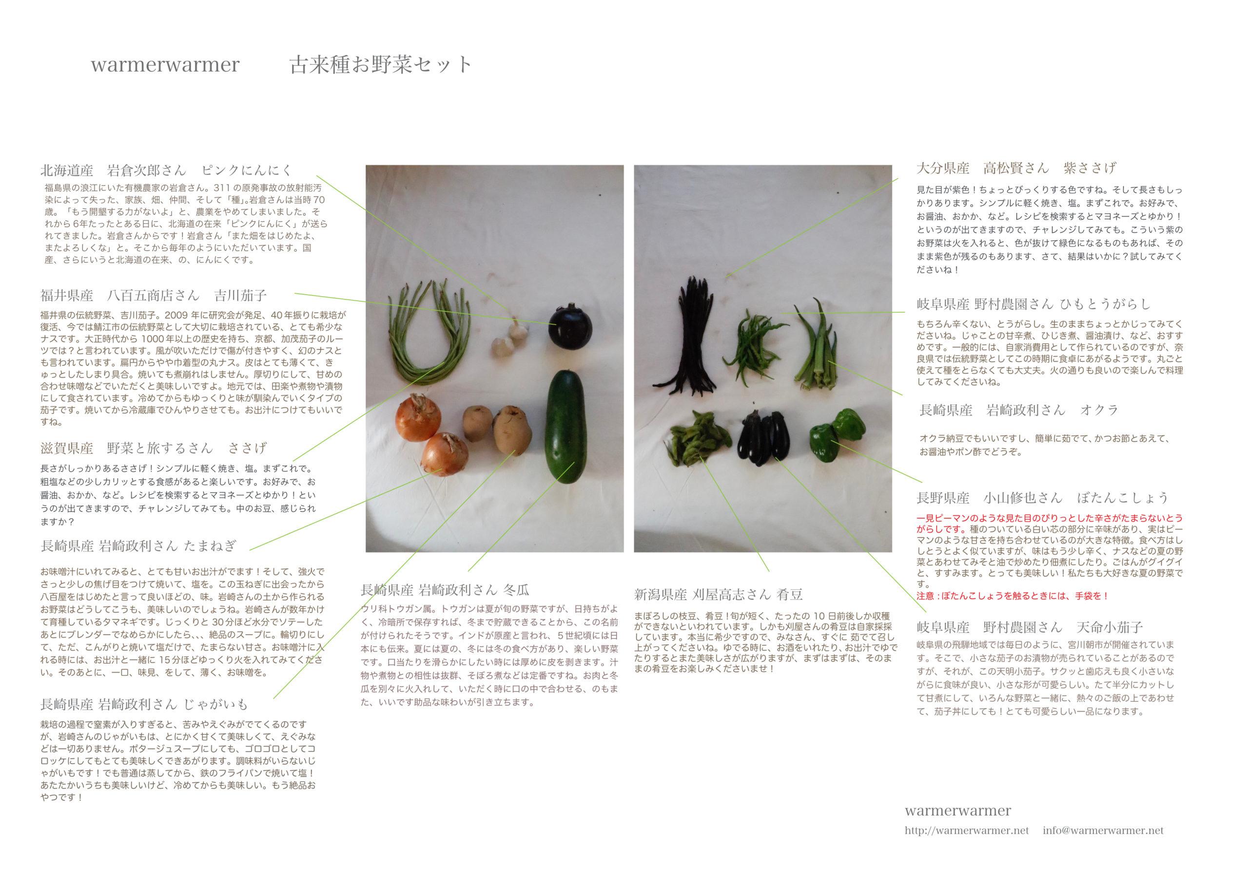 9月24日 本日のお野菜セット