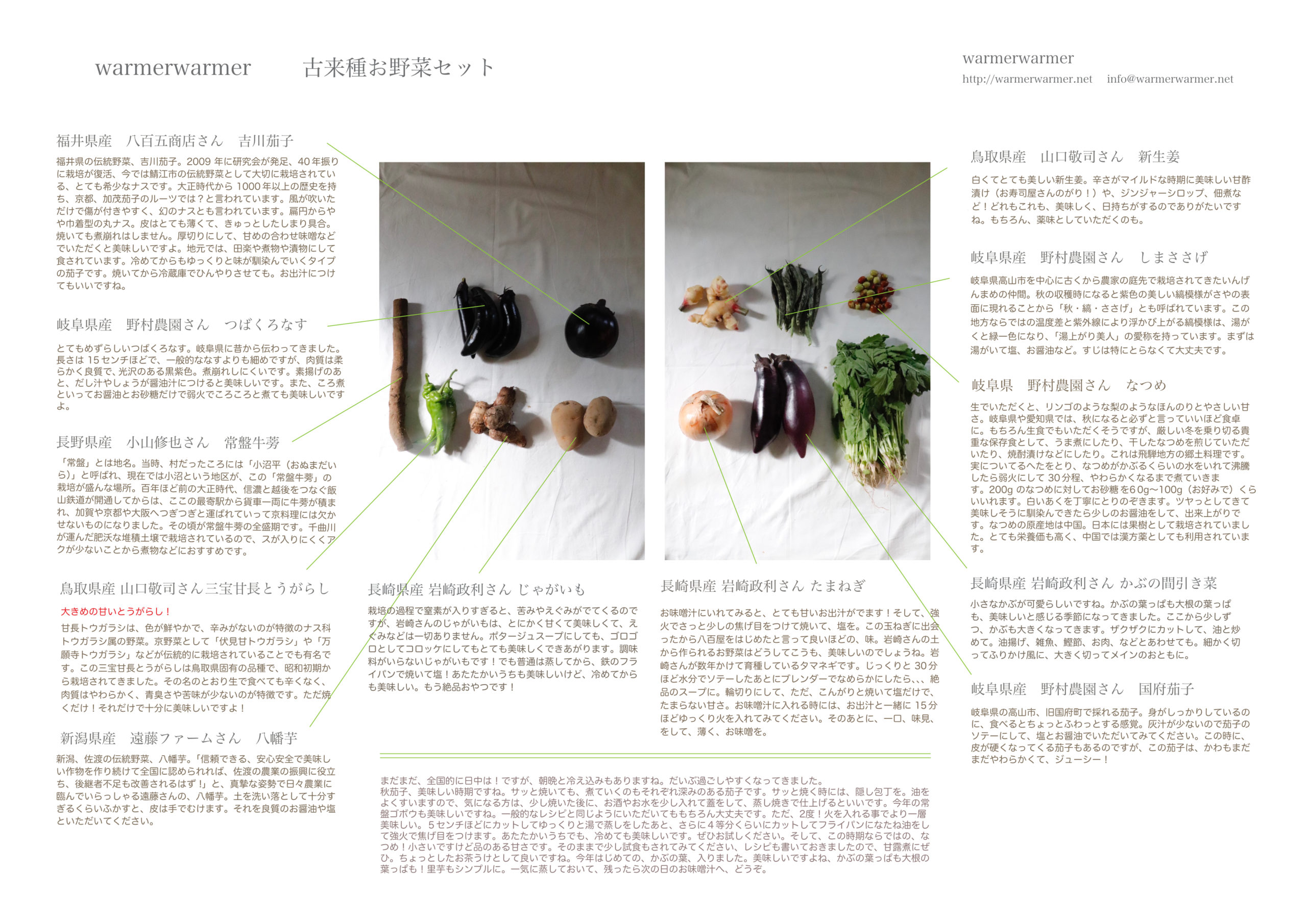 10月15日 本日のお野菜セットの内容です。